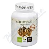 Natural Medicaments Cordyceps PREMIUM cps. 90