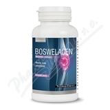 Boswelagen cps. 60